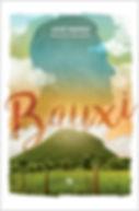 Site-Bauxi.jpg