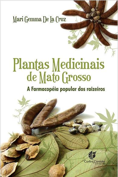 Plantas-medicinais.jpg