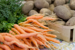 Carrots and Potatoes
