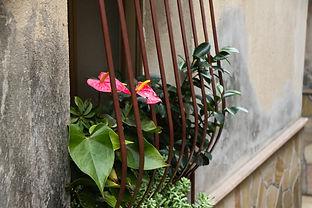 Monterosso181.jpg