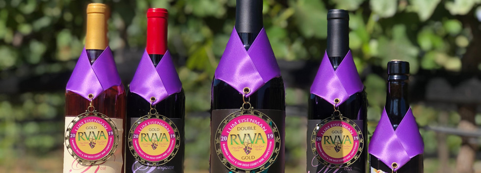 RVVA Silver and Gold Medals