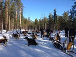 Ringana Incentive Lappland