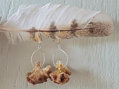 Yellow Celosia Flower Hoop Earrings