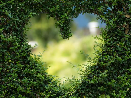 Květen a srdce v něm očima celostní medicíny