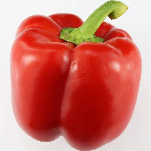 500 gr Poivrons rouges Primeur M.Szymanski