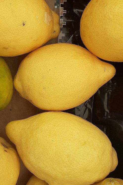 Citron  non traité 0.50 euro pièce M.Szymanski