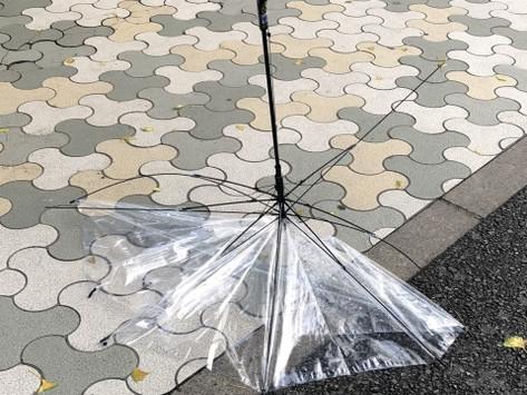 物件が台風被害!初めての保険金申請