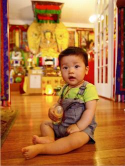 Sangha Boy