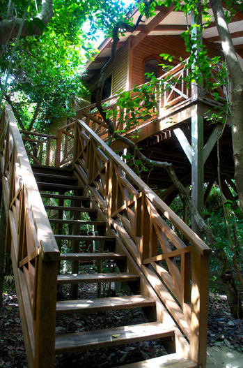 Ensconce-yourself-in-a-luxurious-treehouse-at-Hamanasi-Resort-thumb-350x527-2400