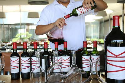 At-Vina-Vik-you-lodge-in-the-vineyards-thumb-400x266-25529.jpg