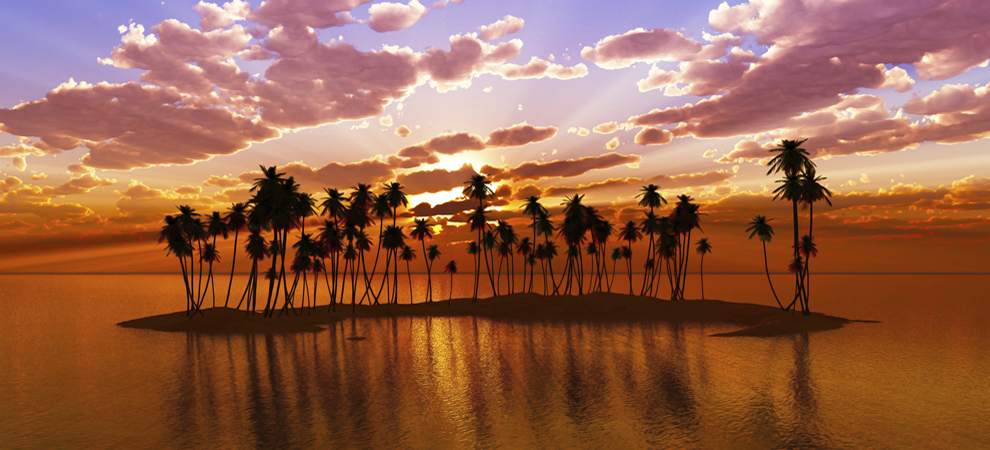 palm-trees-on-Hawaii-Island-chain-keyimage.png