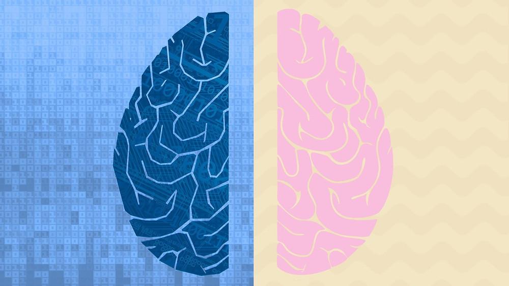 brainsdata.jpg