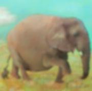 Frumpy Elphant girl.jpg