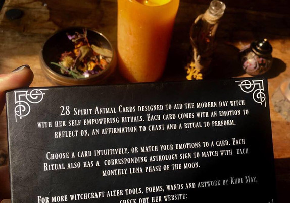 ritual animal cards promotion 9.jpg