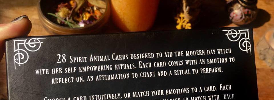ritual animal cards promotion 9.jpg