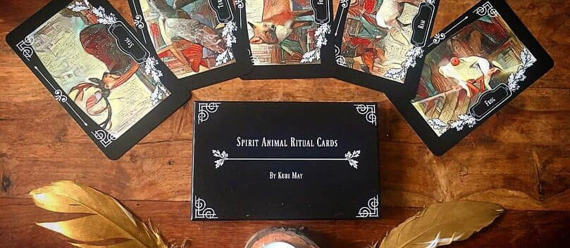 ritual animal cards promotion 8.jpg