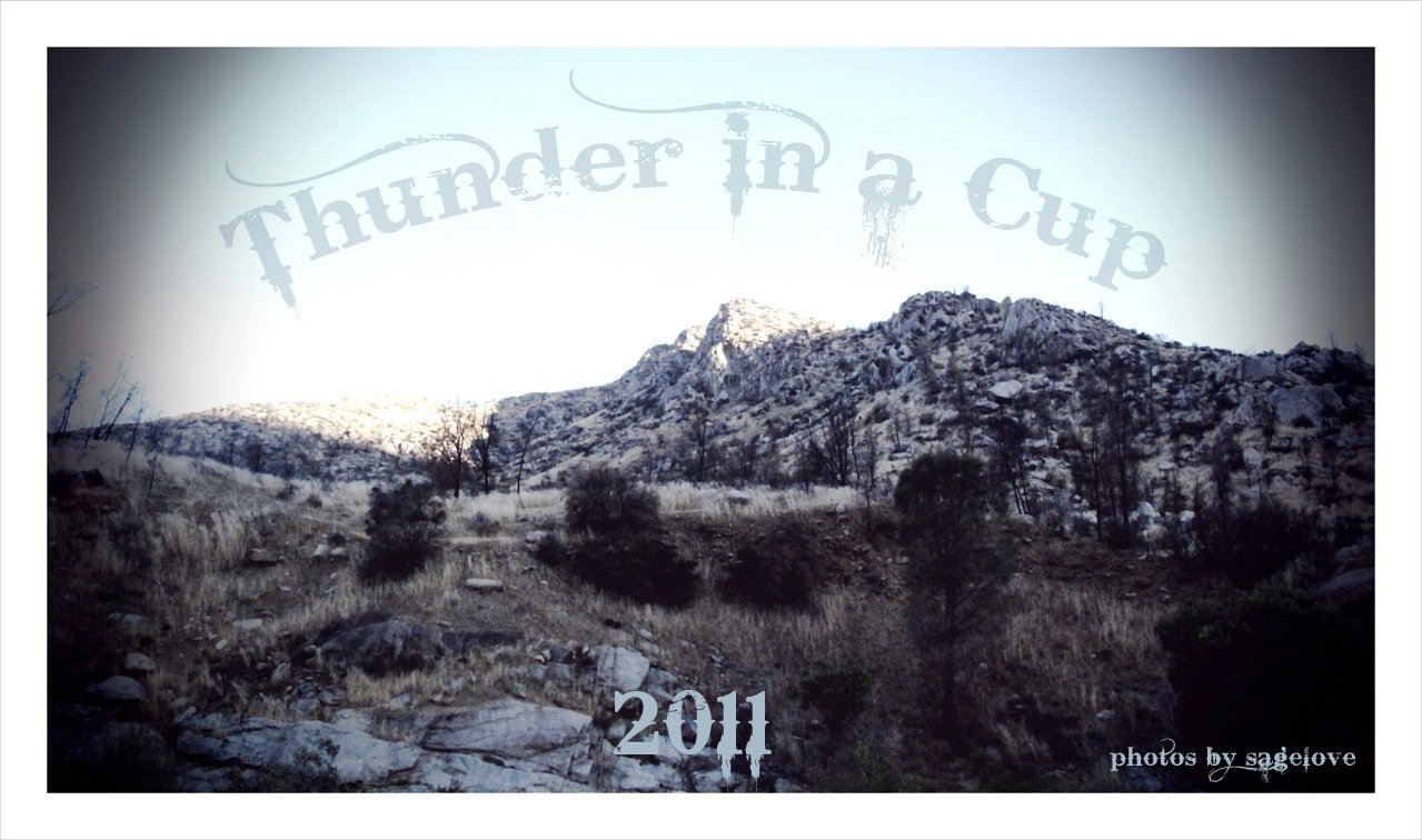 Thunder in a cup 2011
