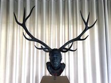 Chapitre XIV Red Deer