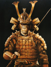 Tukugawa