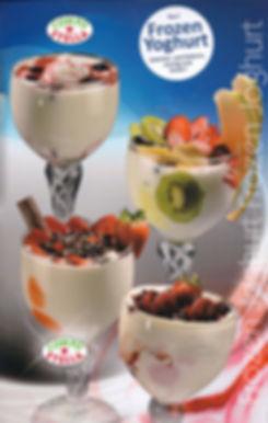 Frzoen-Joghurt-001.jpg