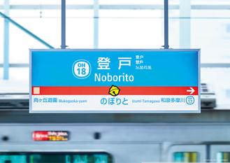 6D_noborito-01.jpg
