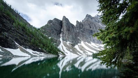 Through Natures Window By Isert's Origin