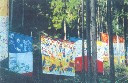 子ども美術絵画教室 あきよしについて 画像13
