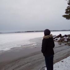 Shores of Maine