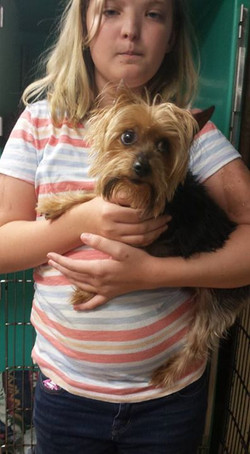 Oliver has been surrendered to us by the owner. They have new baby and decided that they don't have