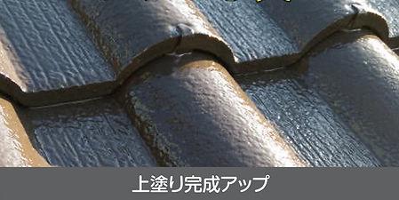 MJTHP_tosou_yaneB_002.jpg