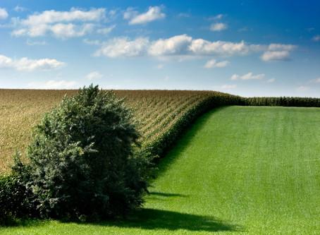 Samen het Heuvelland verduurzamen
