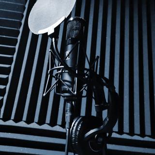 Mikrofon Slate Digital VMS ML-1