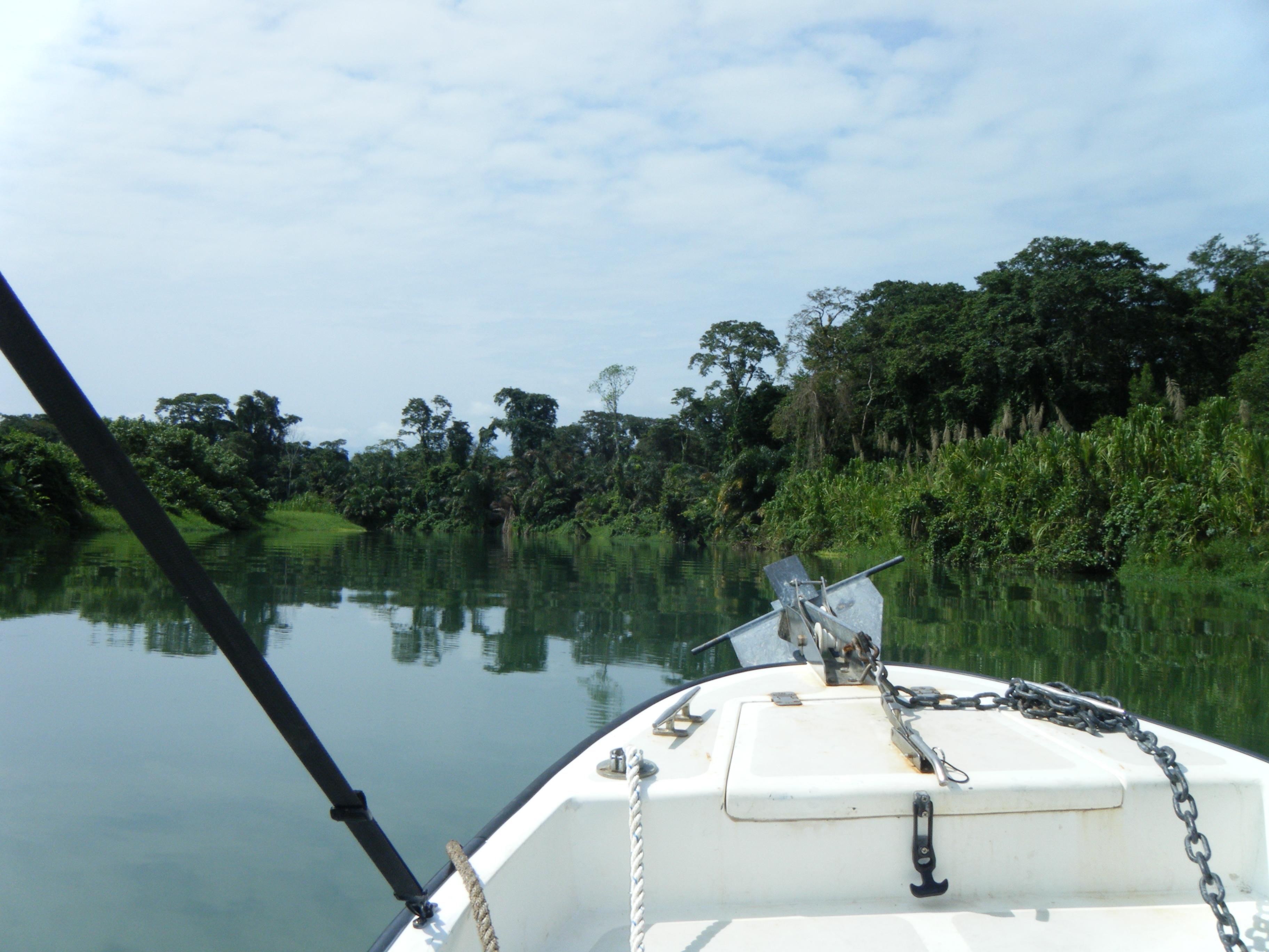 Marine Tropical Ecology