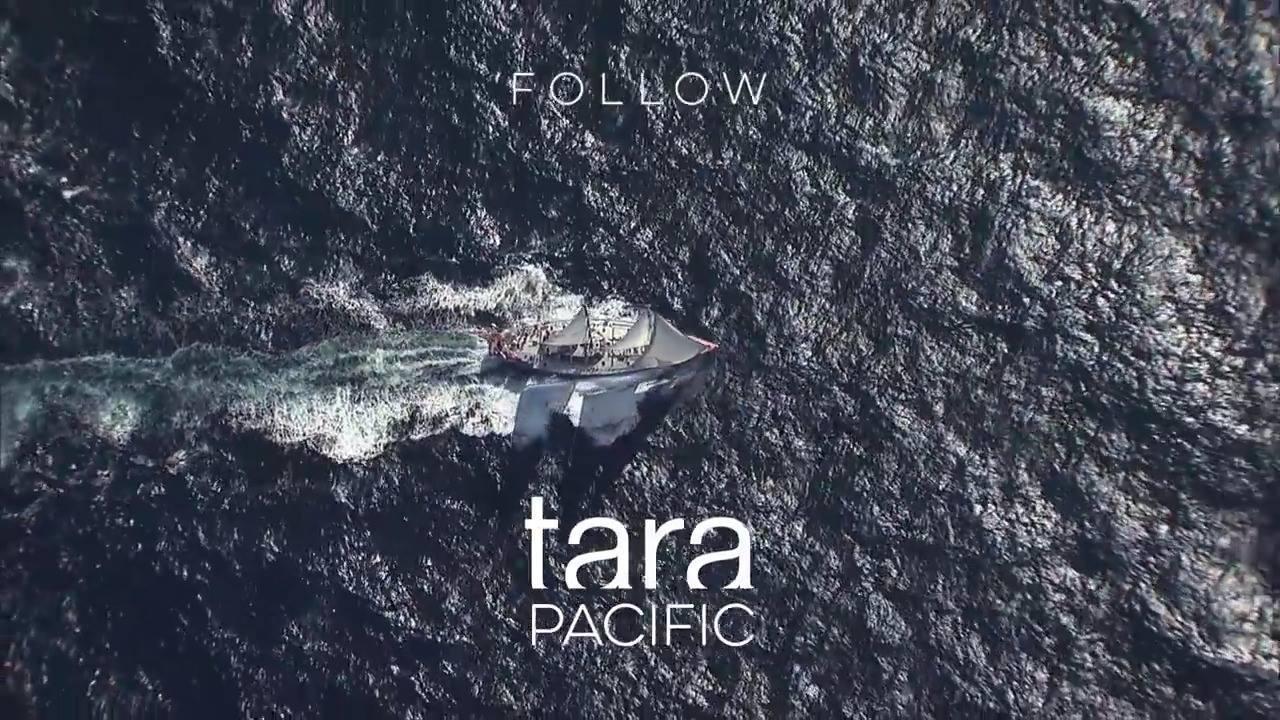 agnès b. TARA Pacific