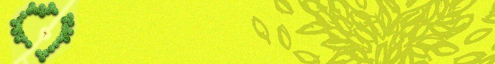 4 Phoenix page banner.JPG