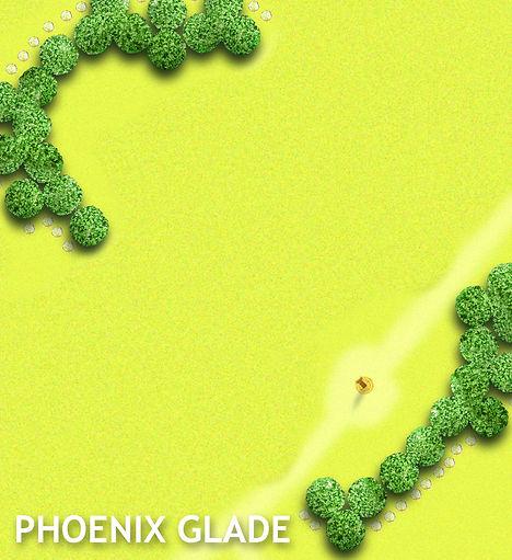 2 phoenix box.JPG