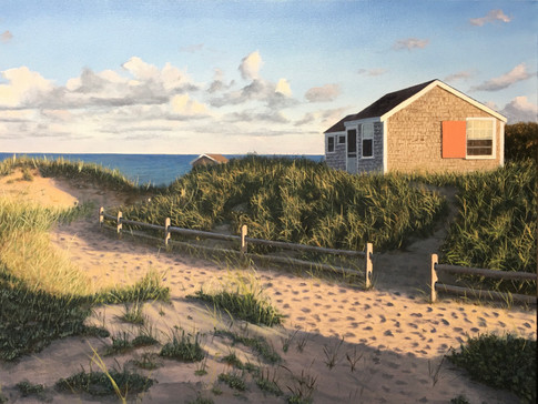 Evening on the Outer Cape