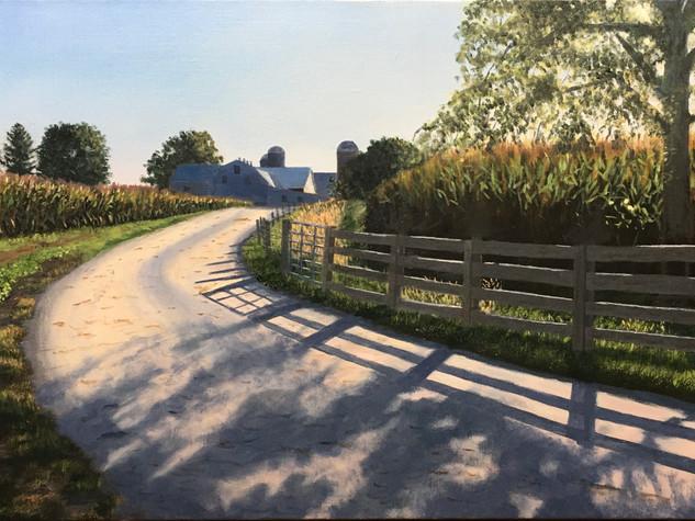 """""""Autumn Shadows, Iron Bridge Road"""""""