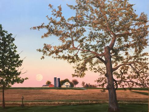 """""""Pink Moon Rising"""""""