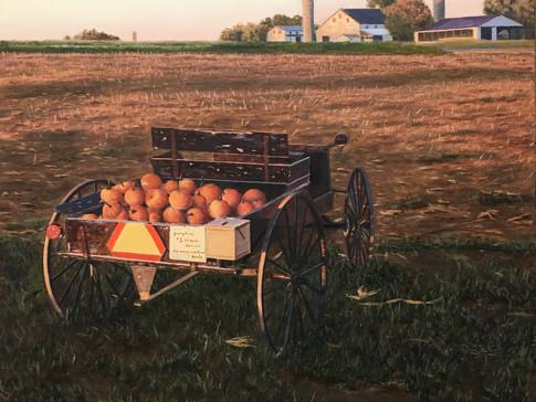 """""""Roadside Harvest"""""""