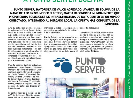 APC by Schneider Electric - Punto Server