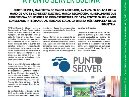 APC by Schneider Electric - Punto Server
