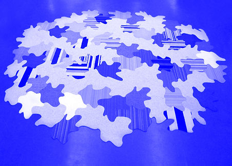 Siddiqui_Tessellated Floorscape.jpg