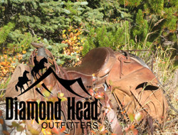 Diamond Head Outfitters