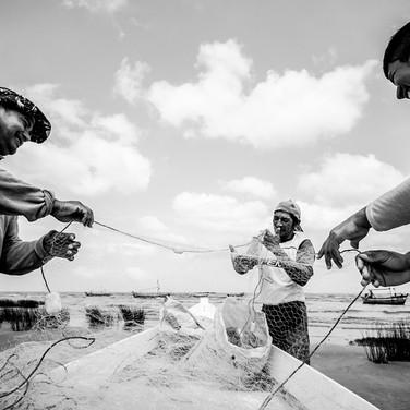 20 - Pescadores #1 2016.jpg