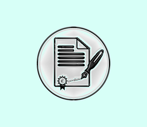 denominación de sociedades de capital, Dirección General de los Registros y del Notariado (DGRN)