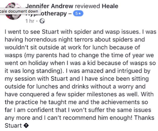 Hypnotherapy testimonial for spider phob