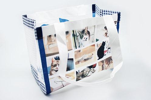 Folding Non Woven Bags