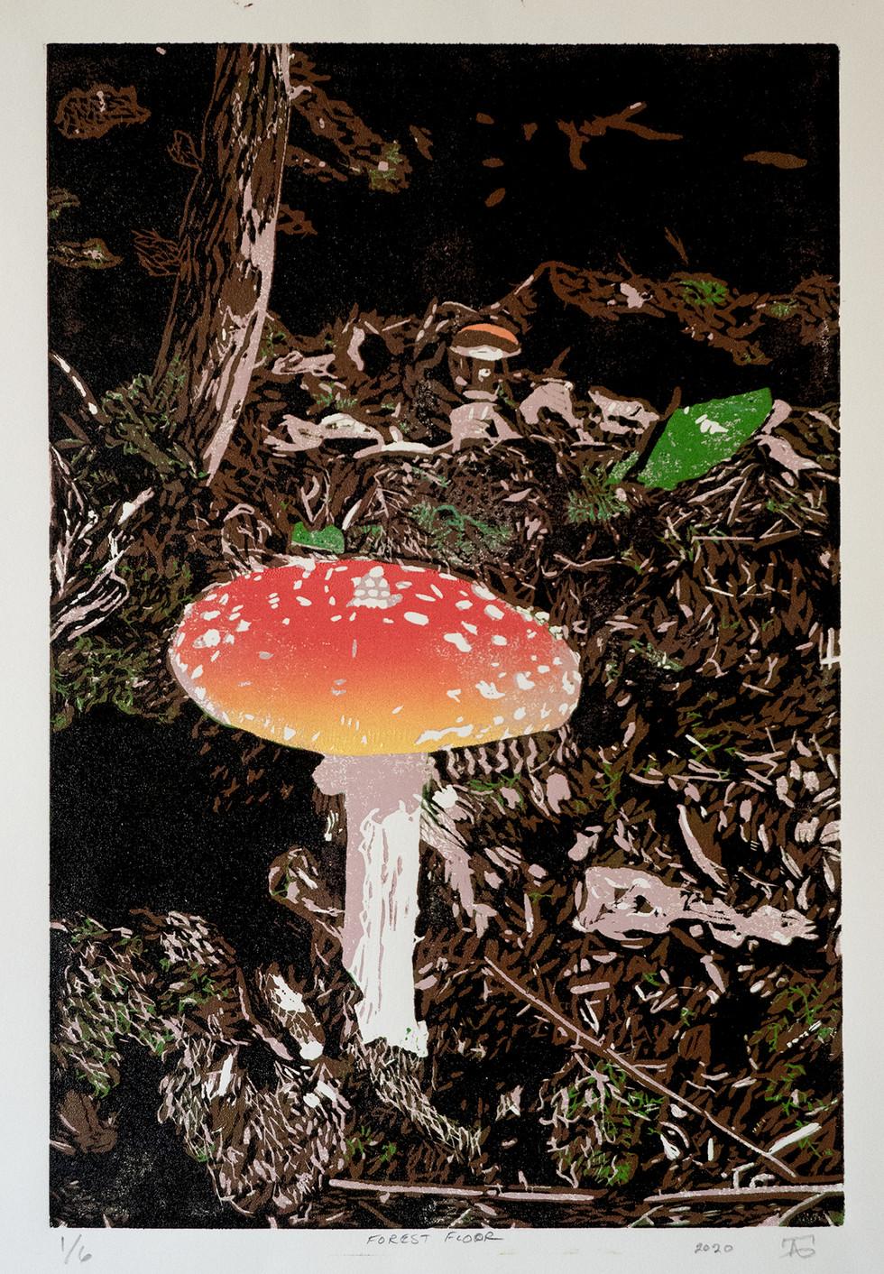Forest Floor Mushroom