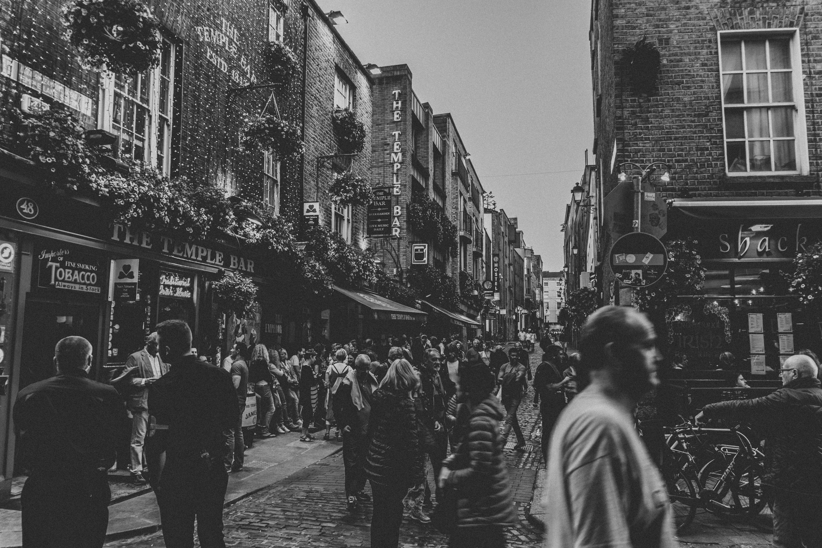 Irland (95 von 507)